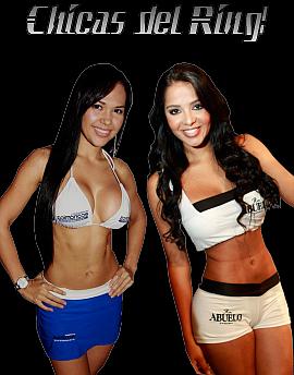 PaneldeBoxeo.com - Lo Mejor del Boxeo en Español - Portal Inicial Portal24
