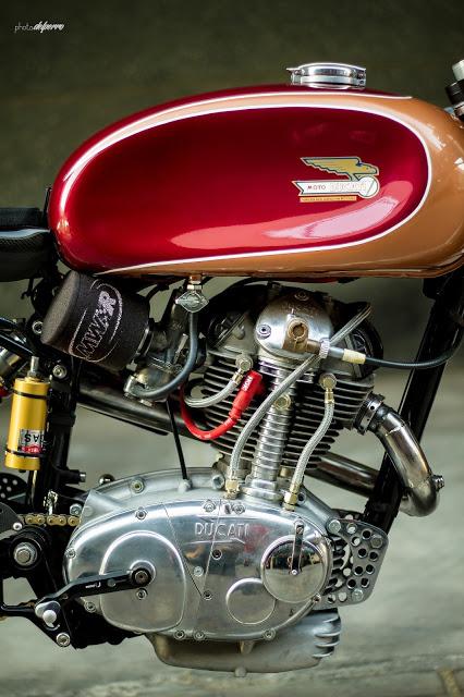 Kabiro Ducati.... Radica11