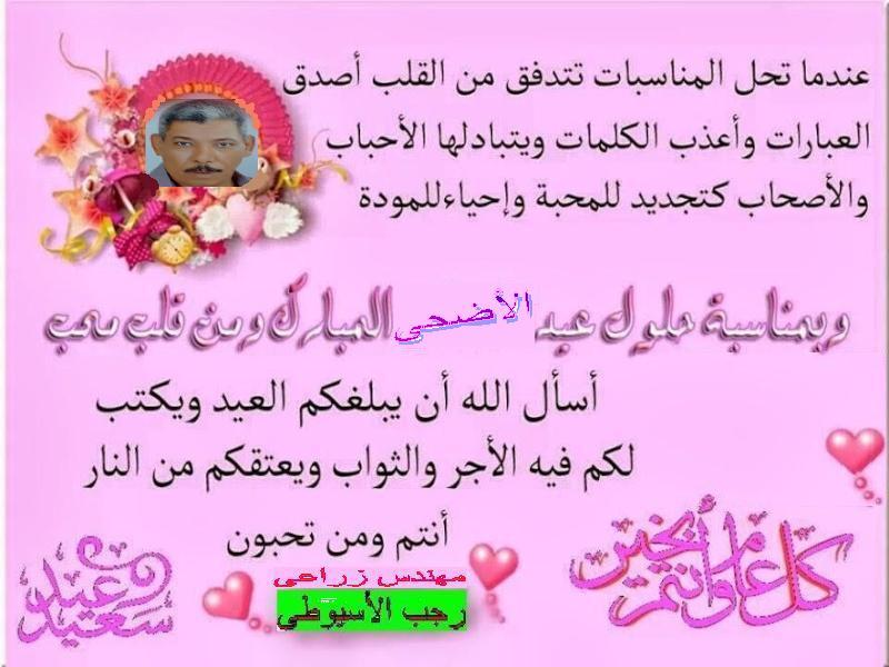 تهنئة  رجب الأسيوطى بمناسبة عيد الأضحى المبارك  . 13013