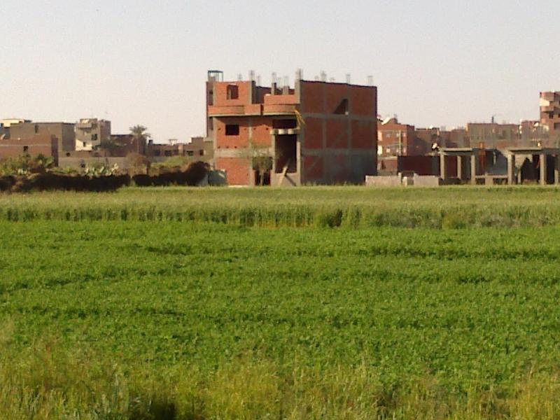 مافيا الأراضي في مصر والثراء الفاحش.؟ 143