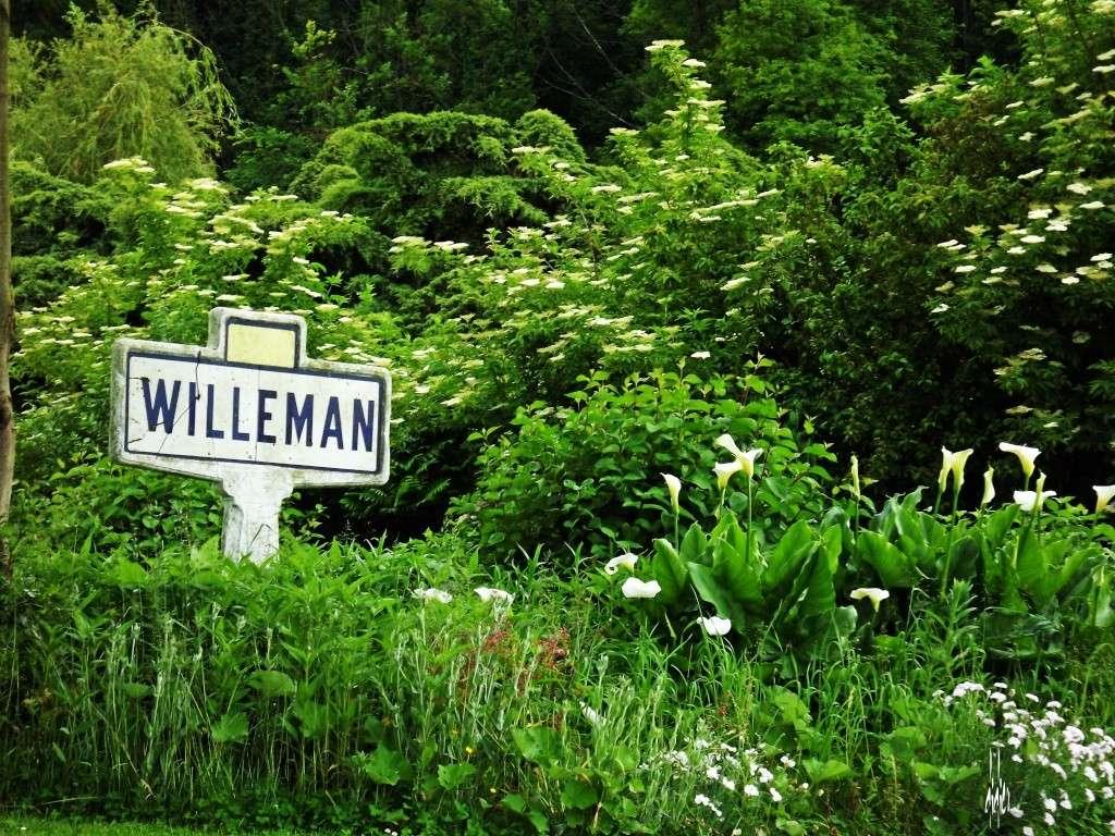 Photos 2ème rassemblement de voitures anciennes - Willeman Dscf1710