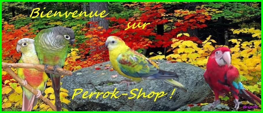 Perrok-Shop le Forum des Passionnés de Perruches et de Perroquets.