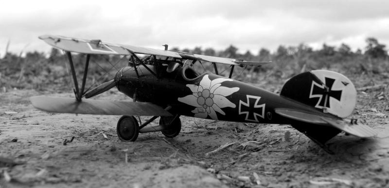 "Albatros D.V ""Edelweiss"" du Lt. Otto Kissenberth, Jasta 16b, juin 1917. 00110"