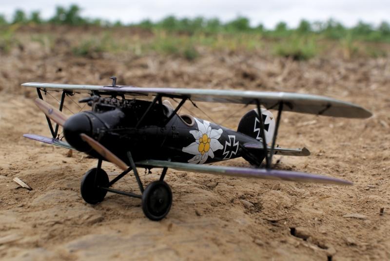 "Albatros D.V ""Edelweiss"" du Lt. Otto Kissenberth, Jasta 16b, juin 1917. 00111"