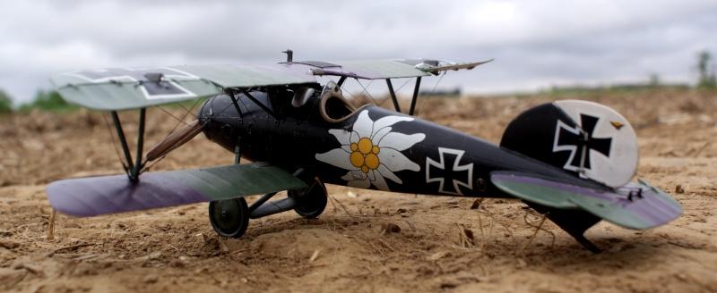 "Albatros D.V ""Edelweiss"" du Lt. Otto Kissenberth, Jasta 16b, juin 1917. 00213"