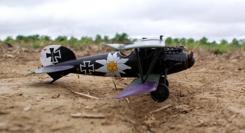 "Albatros D.V ""Edelweiss"" du Lt. Otto Kissenberth, Jasta 16b, juin 1917. 00510"
