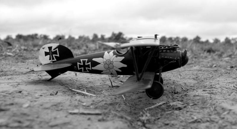 "Albatros D.V ""Edelweiss"" du Lt. Otto Kissenberth, Jasta 16b, juin 1917. 00511"