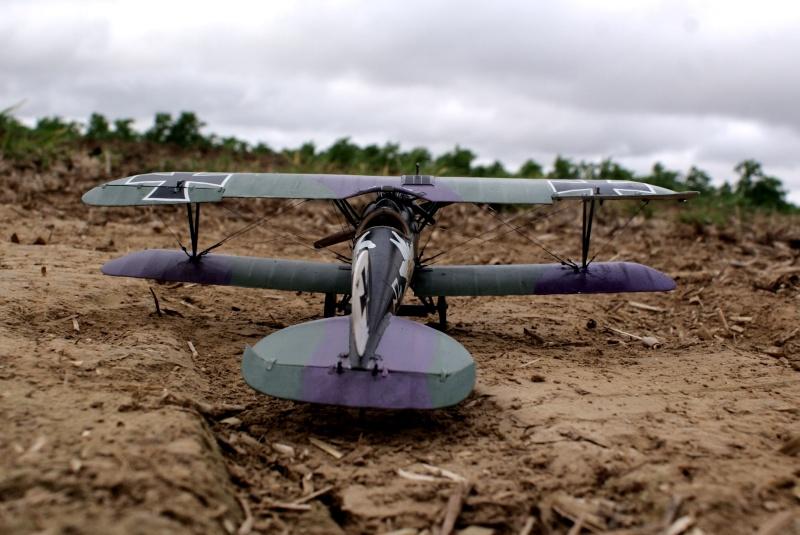 "Albatros D.V ""Edelweiss"" du Lt. Otto Kissenberth, Jasta 16b, juin 1917. 00810"