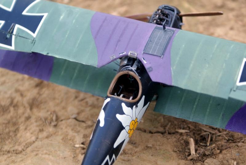 "Albatros D.V ""Edelweiss"" du Lt. Otto Kissenberth, Jasta 16b, juin 1917. 00910"