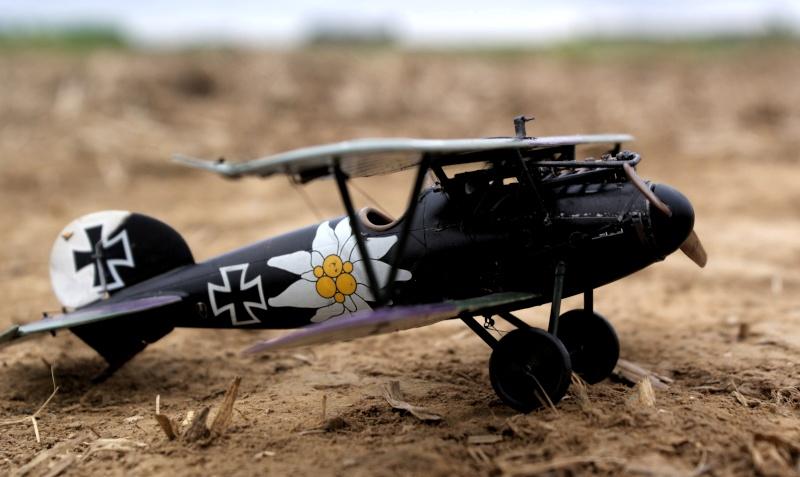 "Albatros D.V ""Edelweiss"" du Lt. Otto Kissenberth, Jasta 16b, juin 1917. 01111"