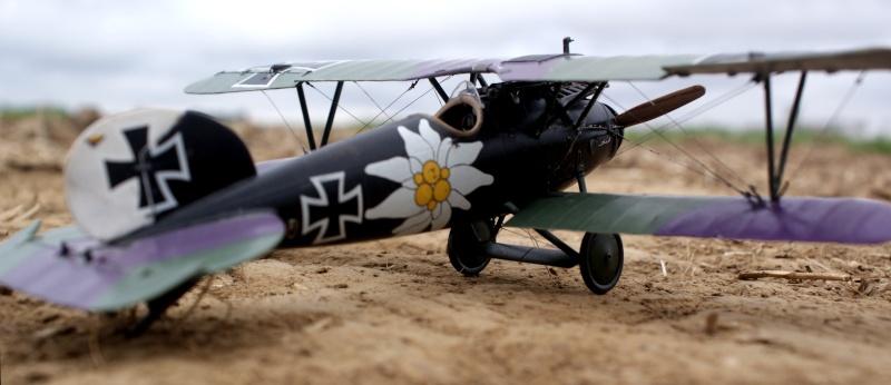 "Albatros D.V ""Edelweiss"" du Lt. Otto Kissenberth, Jasta 16b, juin 1917. 01510"