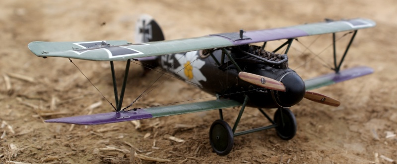 "Albatros D.V ""Edelweiss"" du Lt. Otto Kissenberth, Jasta 16b, juin 1917. 01610"