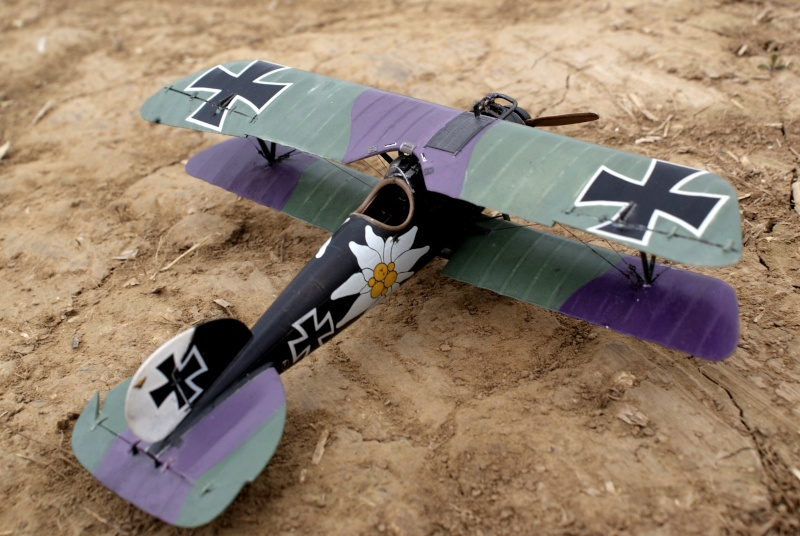 "Albatros D.V ""Edelweiss"" du Lt. Otto Kissenberth, Jasta 16b, juin 1917. 01711"