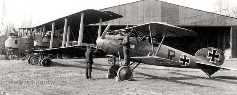 "Albatros D.V ""Edelweiss"" du Lt. Otto Kissenberth, Jasta 16b, juin 1917. 0812"