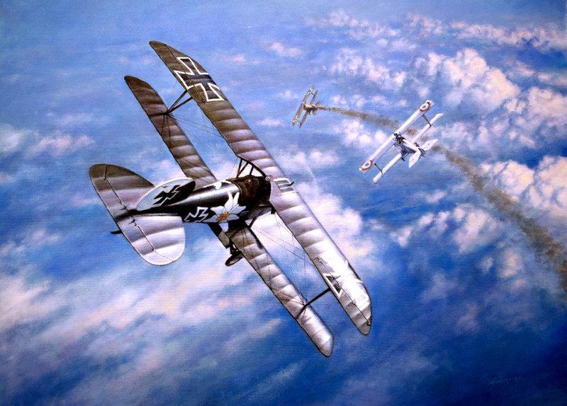 "Albatros D.V ""Edelweiss"" du Lt. Otto Kissenberth, Jasta 16b, juin 1917. _dsc0511"