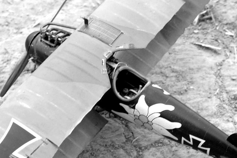 "Albatros D.V ""Edelweiss"" du Lt. Otto Kissenberth, Jasta 16b, juin 1917. Dsc03316"