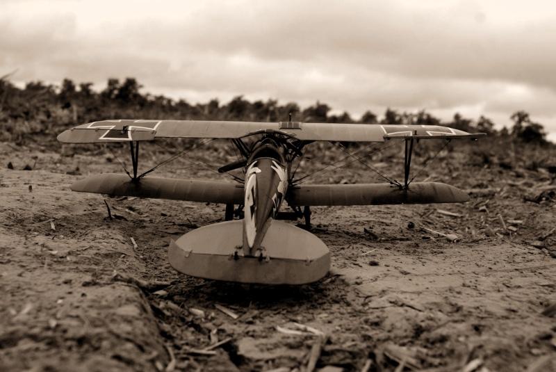 "Albatros D.V ""Edelweiss"" du Lt. Otto Kissenberth, Jasta 16b, juin 1917. Dsc03317"