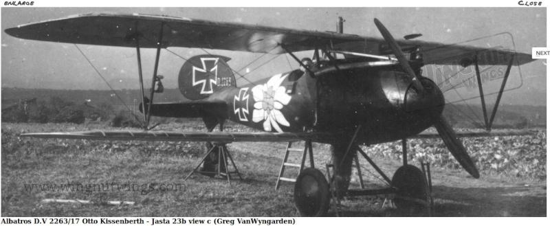 "Albatros D.V ""Edelweiss"" du Lt. Otto Kissenberth, Jasta 16b, juin 1917. Dytail11"