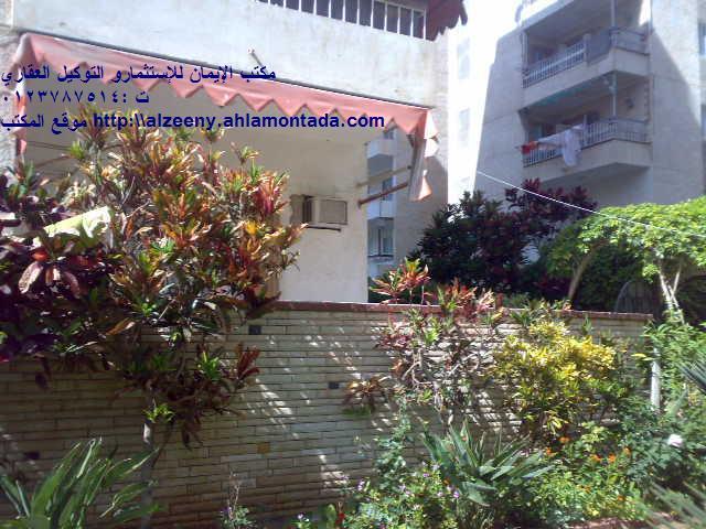 شقة ارضي ( فيلا ) بحديقة كبيرة جدااا للإيجار مفروش مكيفة ثلاثة غرف وصالة لوكس المجموعة التاسعة - المعمورة الشاطيء  Uuuuuu32