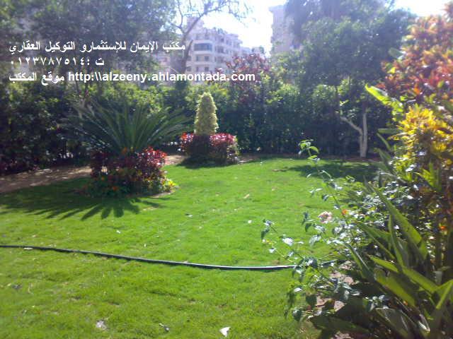 شقة ارضي ( فيلا ) بحديقة كبيرة جدااا للإيجار مفروش مكيفة ثلاثة غرف وصالة لوكس المجموعة التاسعة - المعمورة الشاطيء  Uuuuuu34