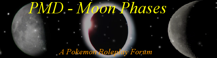 PMD - Eclipse VS. Half-Moon