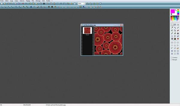 [Débutant] [Photofiltre Studio]  Les motifs Sans_t12