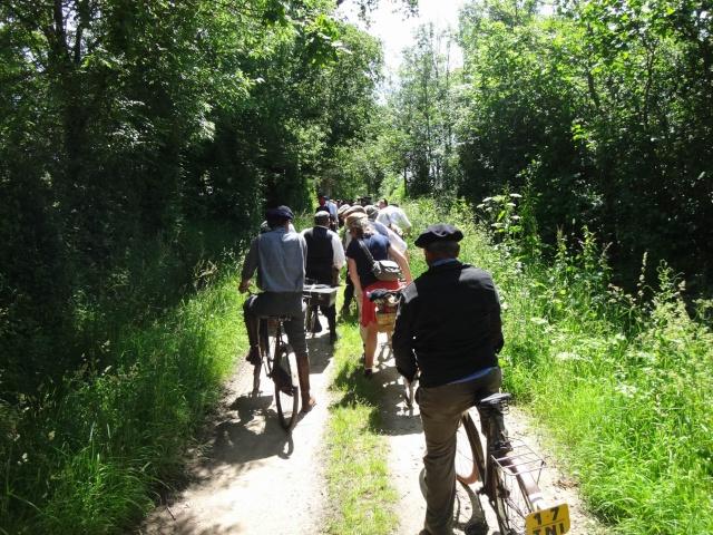 Balade vélos 2014 Dsc03311