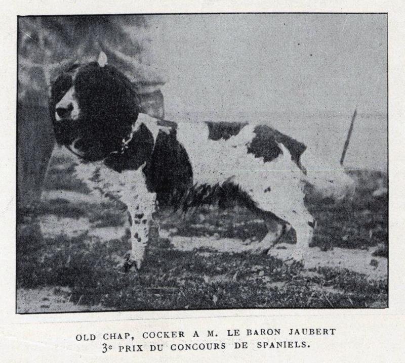 Baron Charles Jaubert, membre du premier comité du Retriever Club... Jauber12