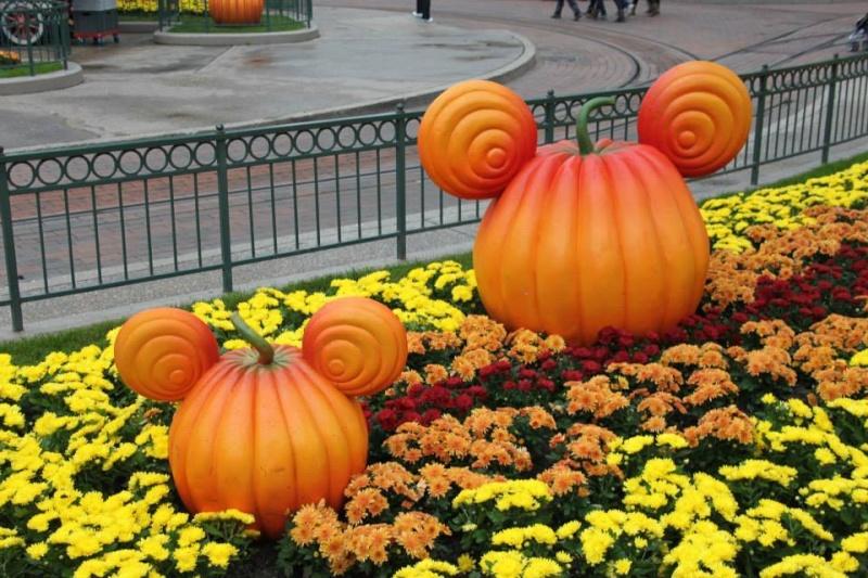 Halloween 2014 - Du 1er Octobre au 2 Novembre - Page 2 14042310