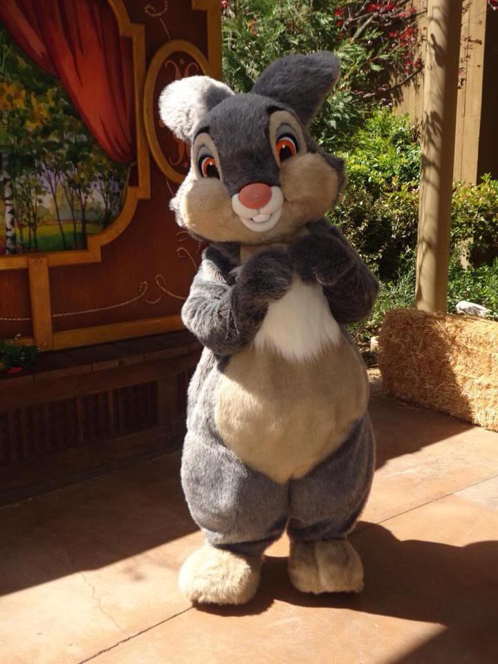 Festival du Printemps du 1er mars au 31 mai 2015 - Disneyland Park  14660710
