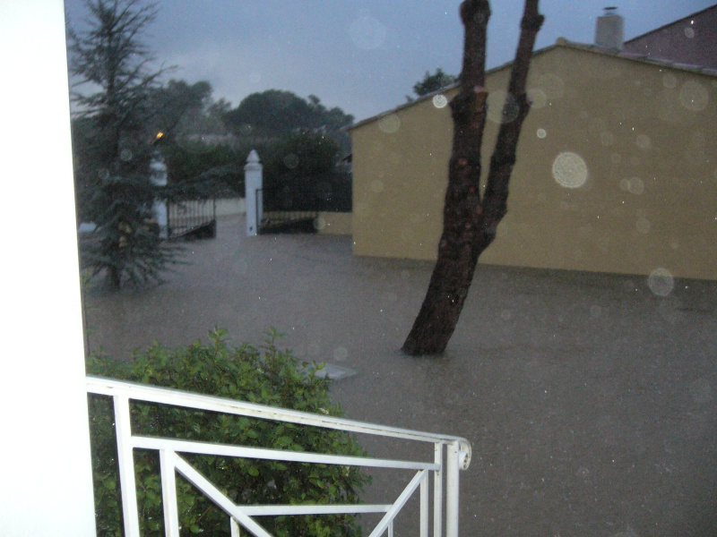 Le déluge est passé P1050012