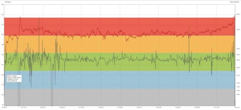 Thierry.B ---) 8km de Niort le 19 octobre 2014 ! Marath11