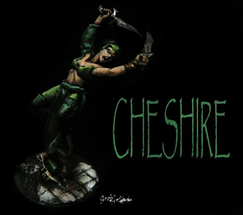 cheshi10.jpg