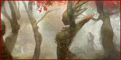 Le Labyrinthe, demeure de la Magicienne Pasiphaé Dryade10