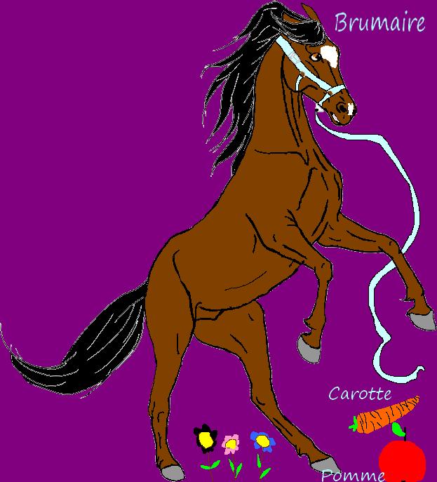 ~Erable~~~~Boutique~~~~Nouveaux~~~~Ouverte~ Arabia10