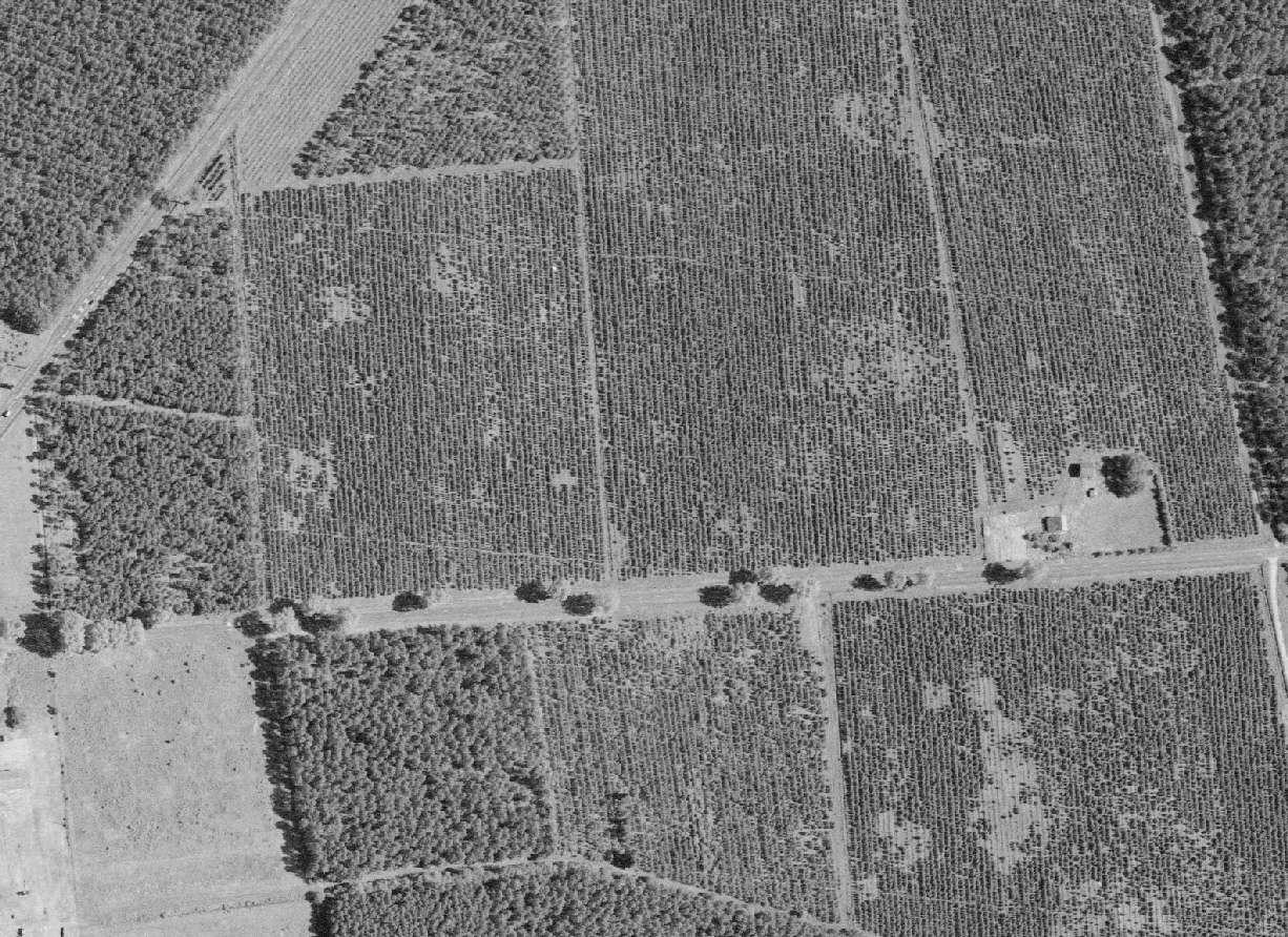 Camp de prisoniers allemands de Caudos/Mios 199610