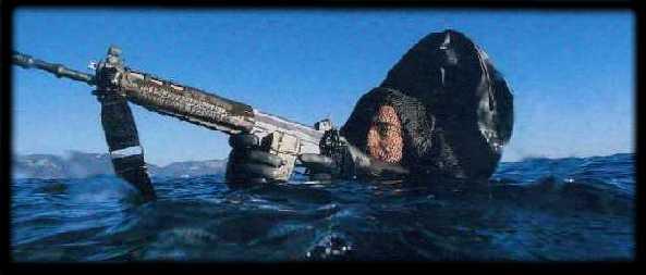 le CPEOM (nageurs de combat du service action......) Chnage10