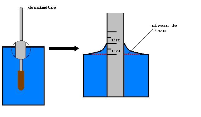 préparer son eau - Page 7 10020710