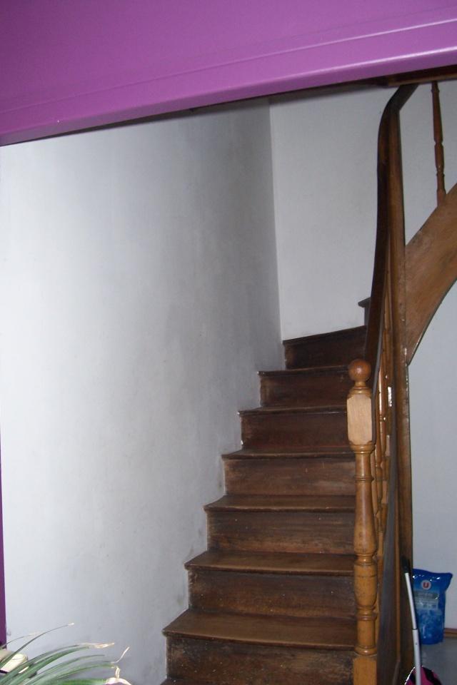 Besoin d'avis pour mon palier/escalier (Lily-le-retour !) 2014-010