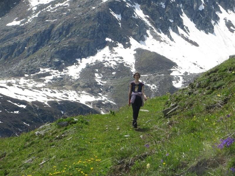 6R6 dans les Alpes Img_4910