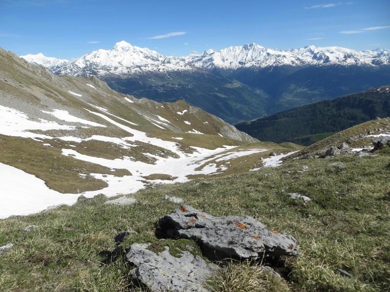 6R6 dans les Alpes Img_4911