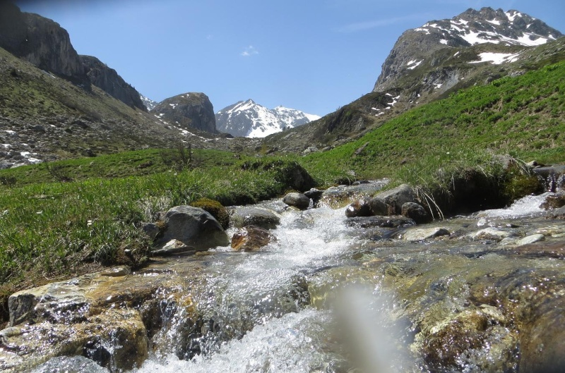 6R6 dans les Alpes Img_5013