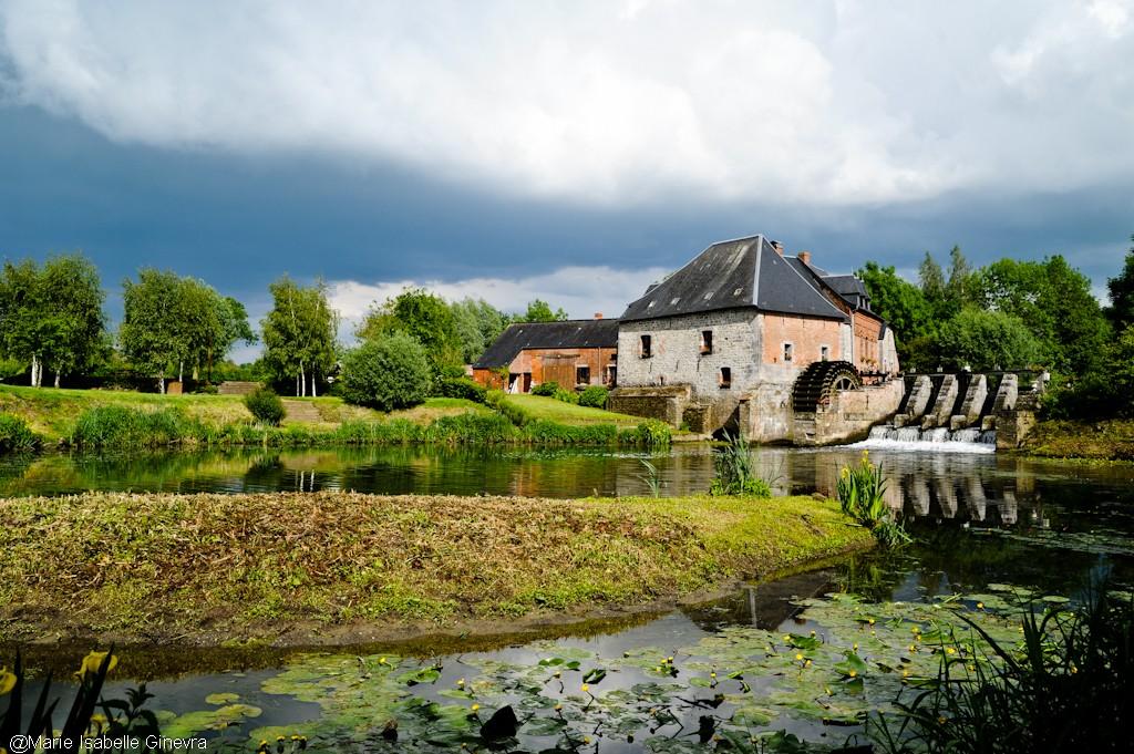 Un après-midi en Avesnois Dsc_3815