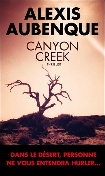 [Aubenque, Alexis] Canyon Creek Canyon10
