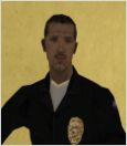 - LSPD Rank Structure - Jimpic11