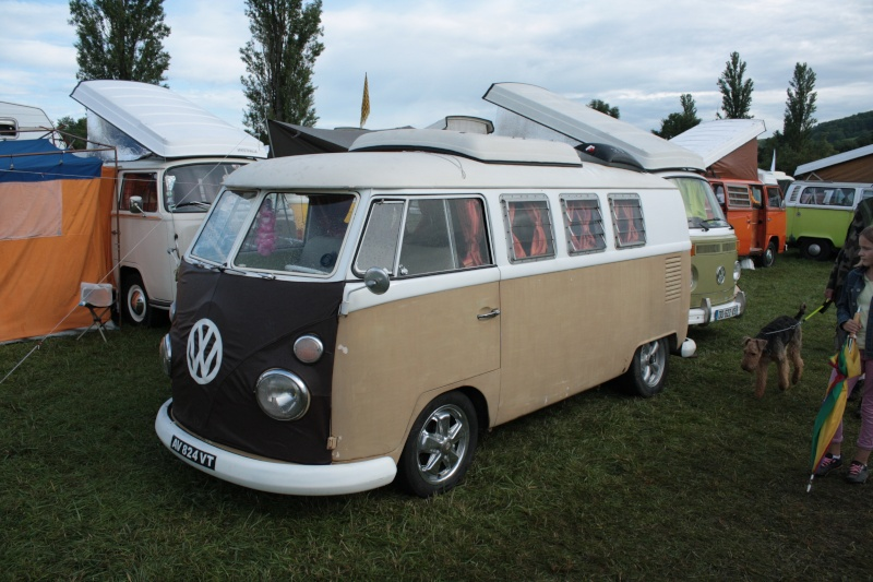 Fley 2014 - The French VW Meeting Fley_220