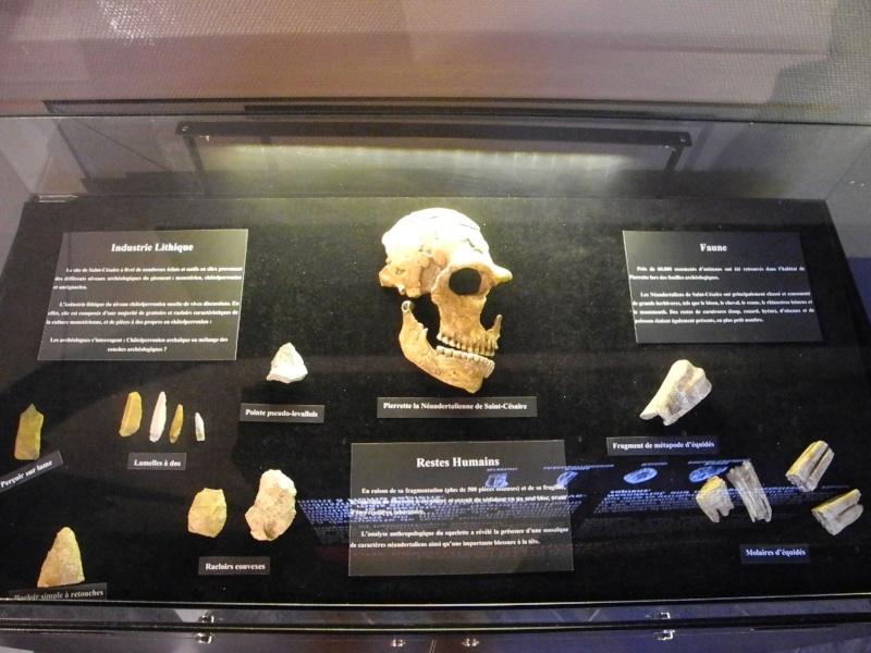 Paléosite de Saint Césaire (17) Dscn8523