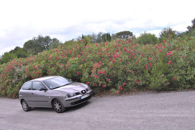 [Photo-reportage] Seat Ibiza 1.4 TDI 75 Signo - Page 2 Dsc_0511