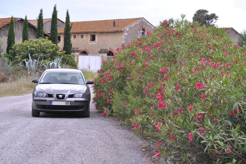 [Photo-reportage] Seat Ibiza 1.4 TDI 75 Signo - Page 2 Dsc_0512