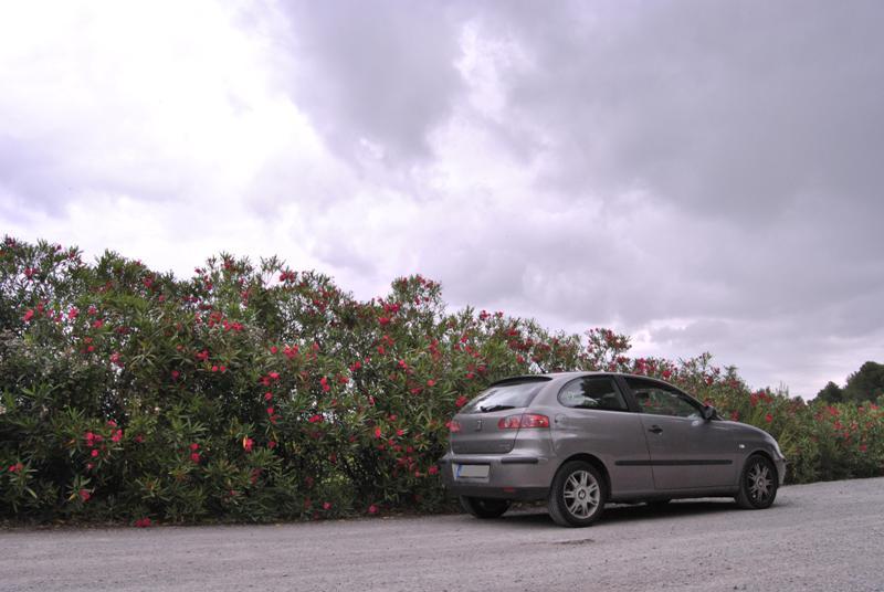 [Photo-reportage] Seat Ibiza 1.4 TDI 75 Signo - Page 2 Dsc_0513